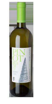 Pinot Bianco Colli Euganei DOC 2017