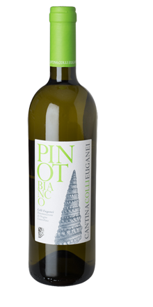 Pinot Bianco Colli Euganei DOC 2019