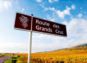 Weinreise - Chardonnay